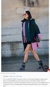 STYLEDUMONDE on ElleCom 5 street style photographers who they are excited to see at NYFW Eva Chen